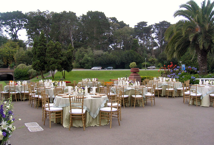 San francisco bay area party and event rentals abbey party rents sf conservatory of flowers wedding 2 junglespirit Image collections