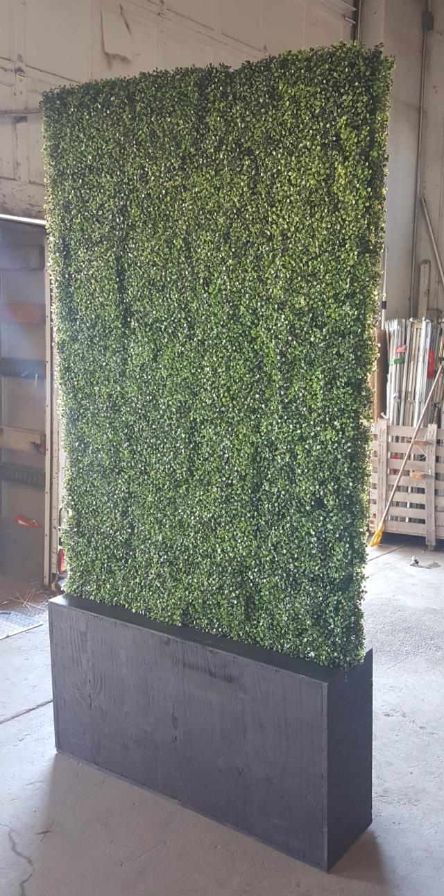 Where to find 8  Box Hedge in San Francisco